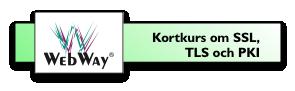 Kortkurs om SSL, TLS och PKI