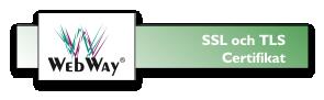 SSL och TLS-certifikat från de ledande leverantörerna
